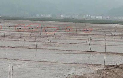 """台州三门:讨要工程款的村民被刑拘 非法采砂的村主任""""毫发无伤"""""""