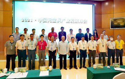 中国元宝枫产业发展峰会在曲靖召开