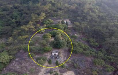 市民举报毁林建墓行为,相关部门为逃避追责回复称:在公办