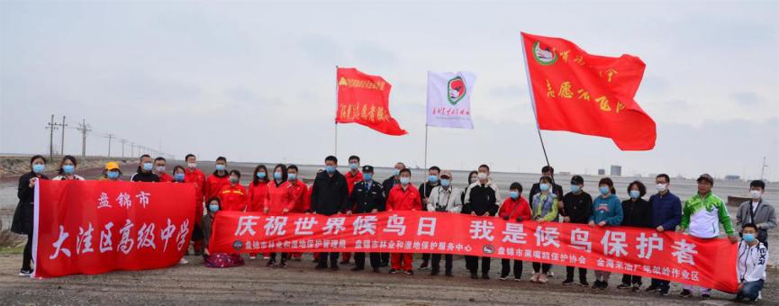 世界候鸟日 盘锦市黑嘴鸥保护协会举办环境宣教活动
