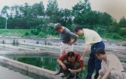 四川新都:民营渔场遭村民哄抢古稀老人上告无门